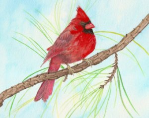 "Beverly Dyer's original painting ""Cardinal."""